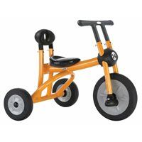 (Ages 2-4) Pilot 200 Tricycle