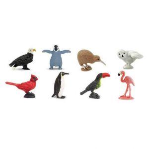 Birds Fun Pack