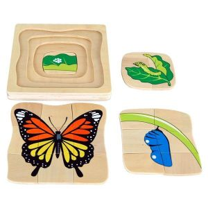 Wooden Butterfly Life Cycle Puzzle