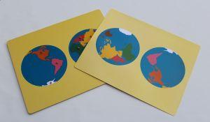World Map - NOT FRAMED