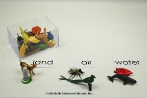 Land, Air and Water Classification